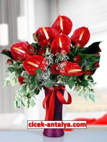 cam-vazoda-antoryum-ve-guller-vp2-212x282 İşyeri İçin Çiçek