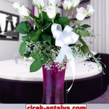 fanusda-11-beyaz-gul-vp2-212x212 Anasayfa