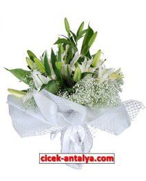 lilyum-buketi-212x262 Anasayfa