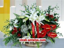 sepette-antoryum-lilyum-kirmizi-guller-212x159 İşyeri İçin Çiçek