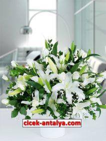 seramik-vazoda-lilyum-gul-212x282 İşyeri İçin Çiçek